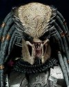 HOT TOYS - AVP ELDER PREDATOR 2.0